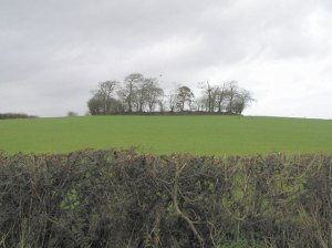 Irish Ringfort