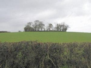 Irish Ringfort